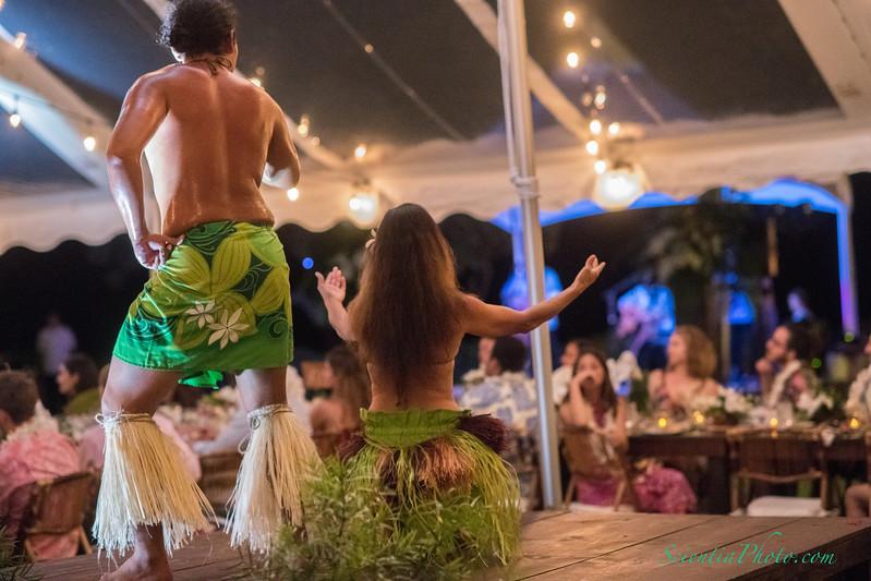 Hula Dancer - VII