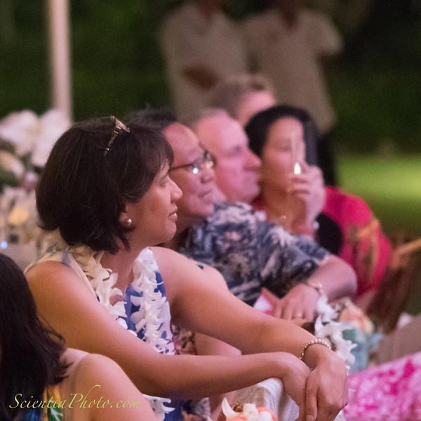 Luau Guests Watching the Hula