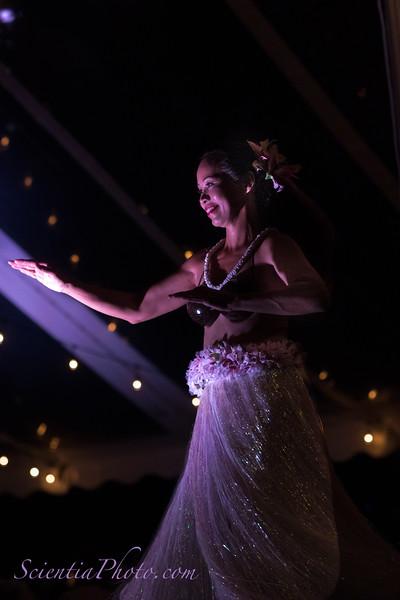 Hula Dancer - II