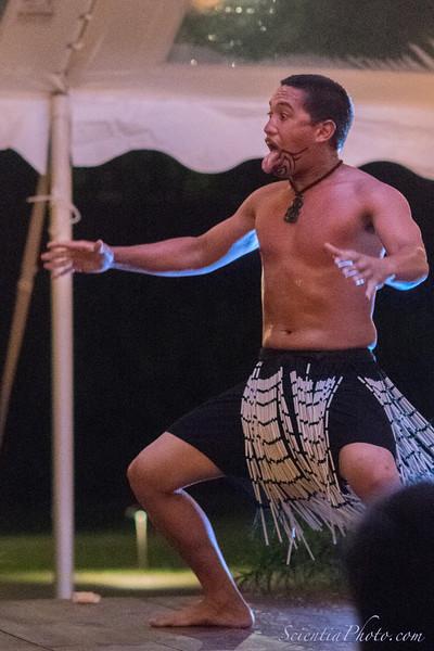 Hula Dancer - V
