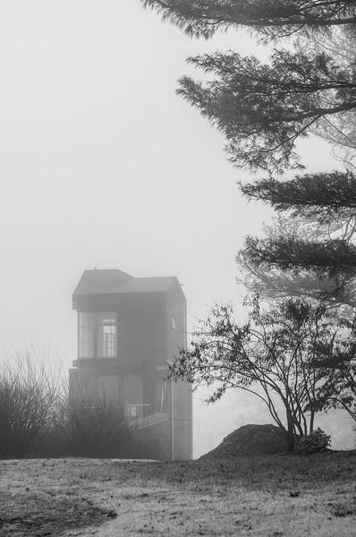 Winter Fog - 4
