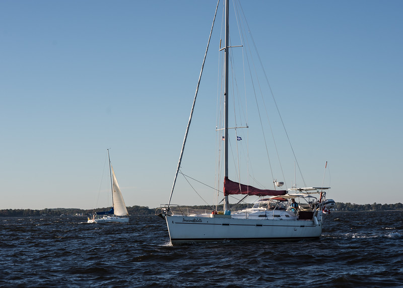 An Abundance of Sailboats That Would Have Pleased Judy