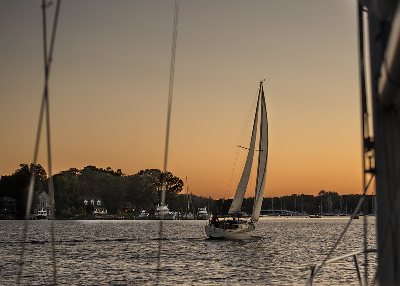 """The """"Antares"""" Was Our Evening Star that We Followed into the Marina as the Sun Set"""