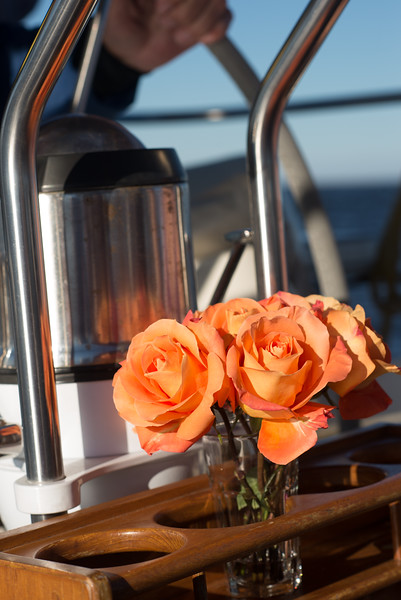 We Each Tossed a Rose into the Chesapeake as We Made Our Personal Farewells