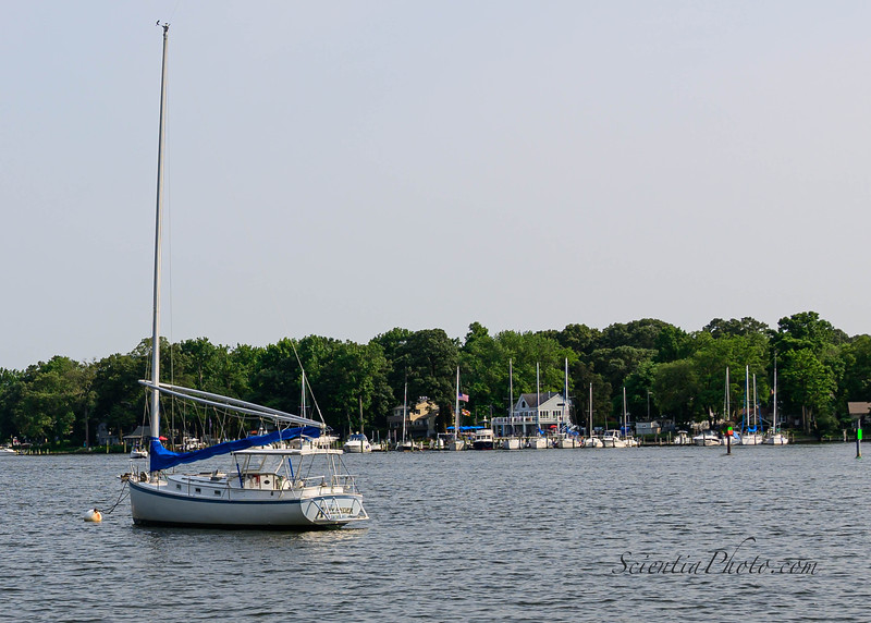 Obligatory Image of a Sailboat on the Magothy