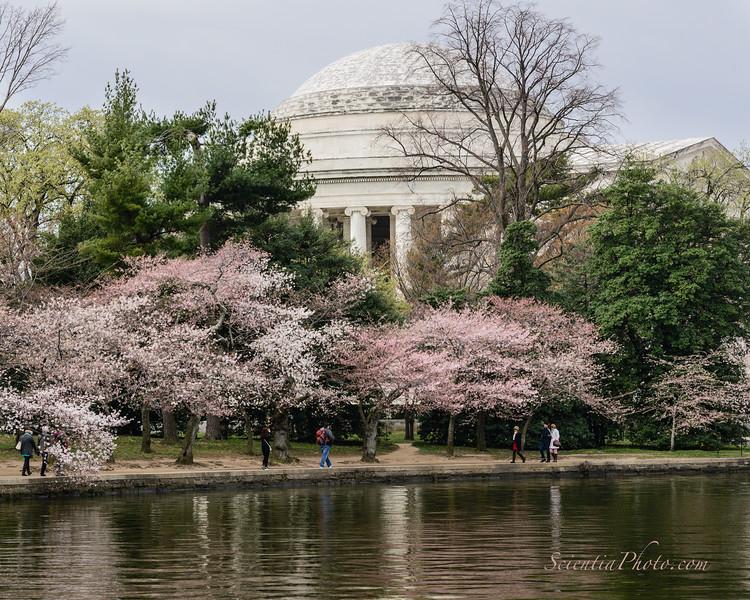Jefferson Memorial - II