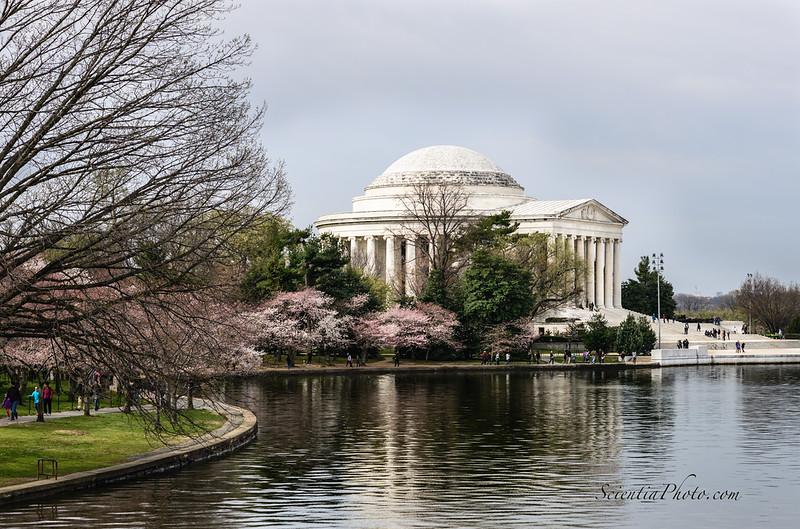 Jefferson Memorial - I
