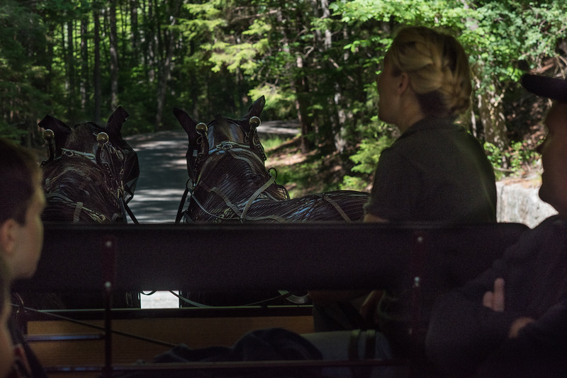 We Took the Famous Carriage Ride in Acadia National Park