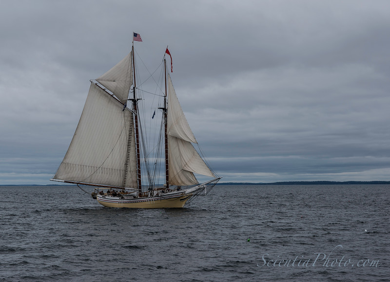 The Heritage Running Before the Wind