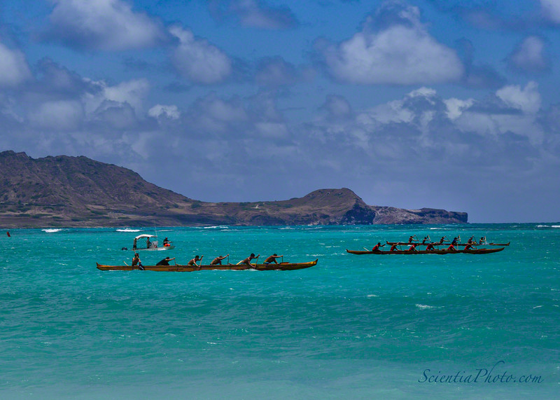 Outrigger Race with Mokkapu in the Background