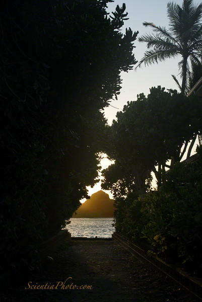 Mokulua Nui from a Public Access Pathway