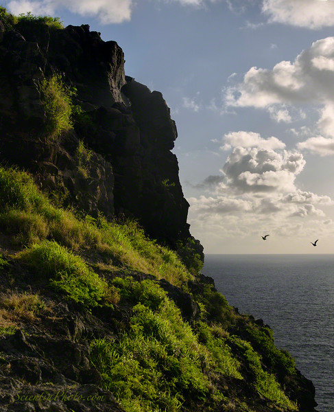 The Cliffs of Makapu'u