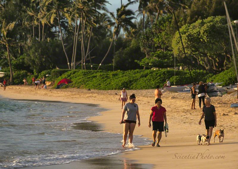 Morning Walkers on Lanikai Beach