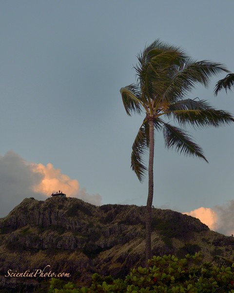 Hikers Watching the Sunrise from the WWII Pillbox on Lanikai Ridge