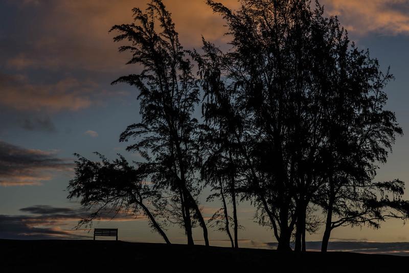 Kailua Beach Park in the Morning