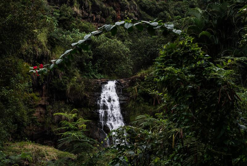 The 45 Foot Tall Waimea Falls in Full Flow