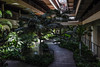 Interior Gardens - 4