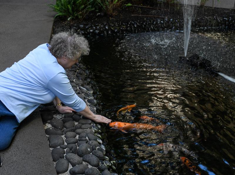 Nancy and the Carp Pond