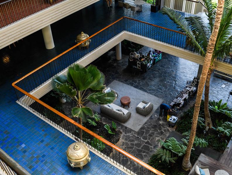 Interior Gardens - 1