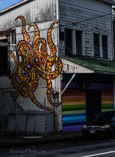 Wall Mural in Hilo, Hawaii