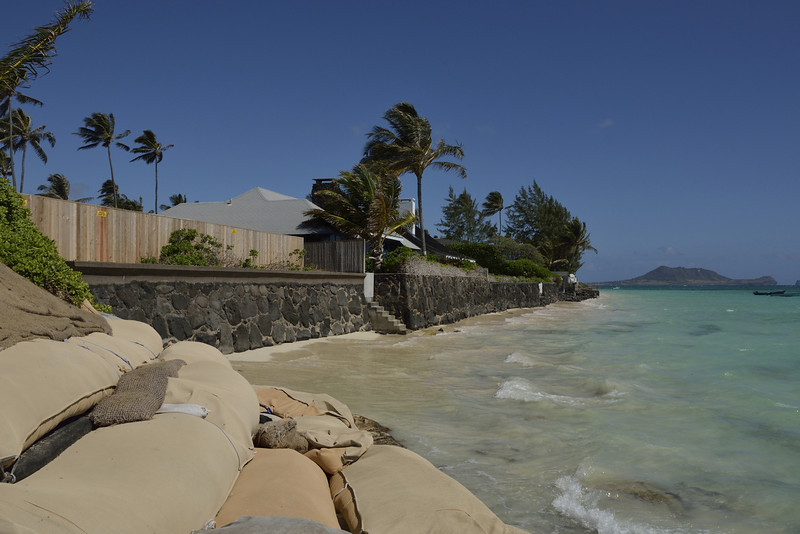 The Beach at Our House in Lanikai (Degraded Since 1950)