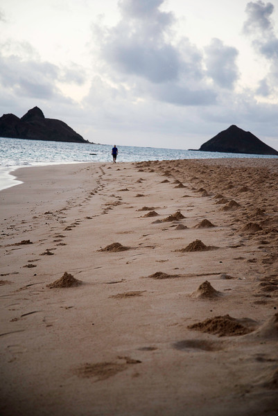 Mounds of Sand Marking Crab Holes Resemble a Mineature  Chain Of Volcanoes