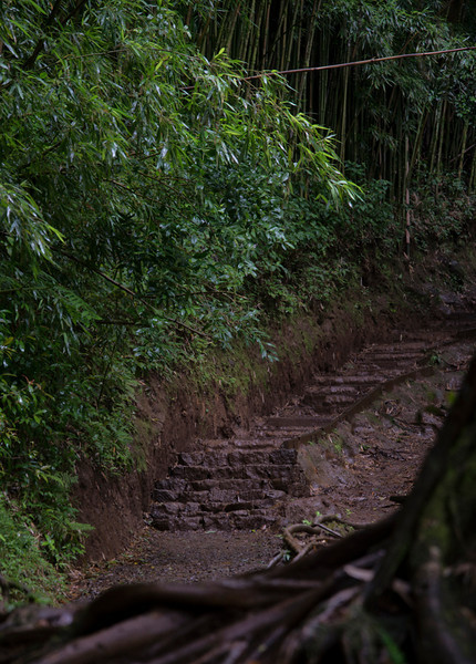 Stairs that Made the Rain and Mud Tolerable