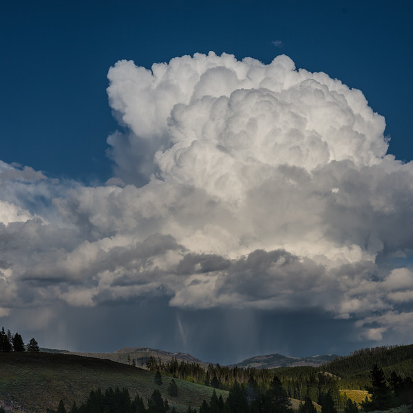 Storm Clouds in the Gallatin National Forest I