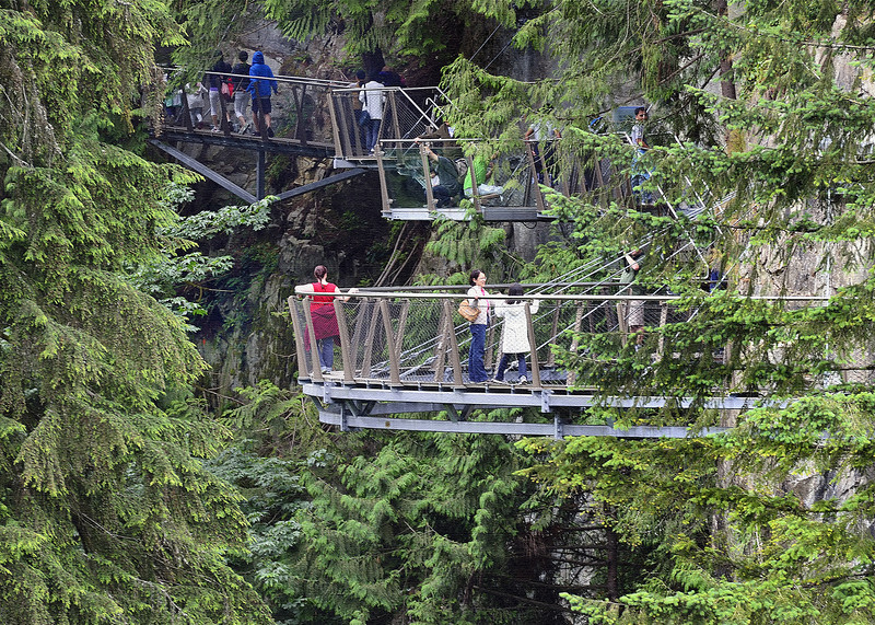 The Cliff Walk from the Suspension Bridge