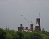 A Flight of P-51 Mustangs Swoop Over the Smithsonian Castle in the VE Day 70th Anniversary Flyover of Washington