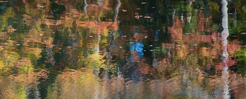 Autimn Scene in Loch Raven Reservoir
