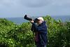 Shooting Birds at the Kilauea Nature Preserve