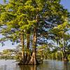 Stumpy Lake 08 July 17