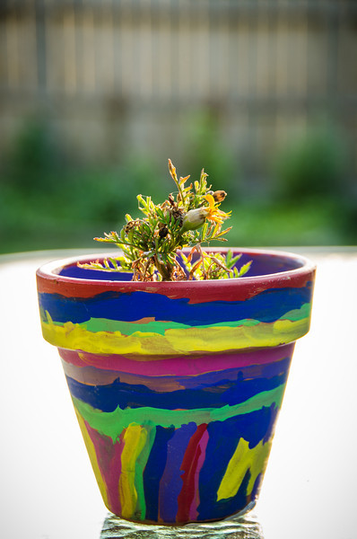 Colorful Clay Pot