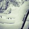 Resting Snow