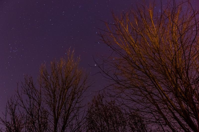 Moonless Night Under the Stars