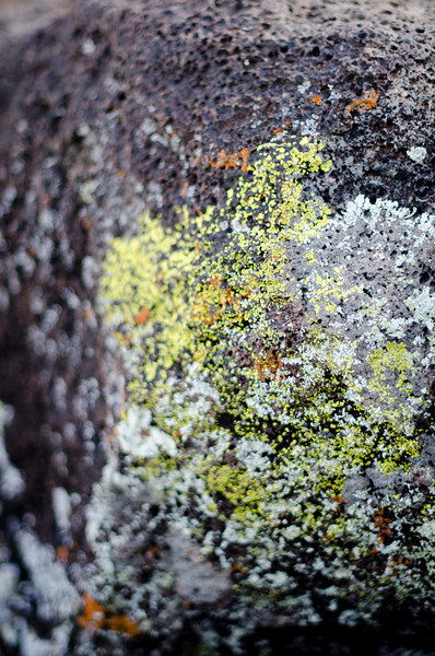 I'm really lichen it so I can't stop, sorry.