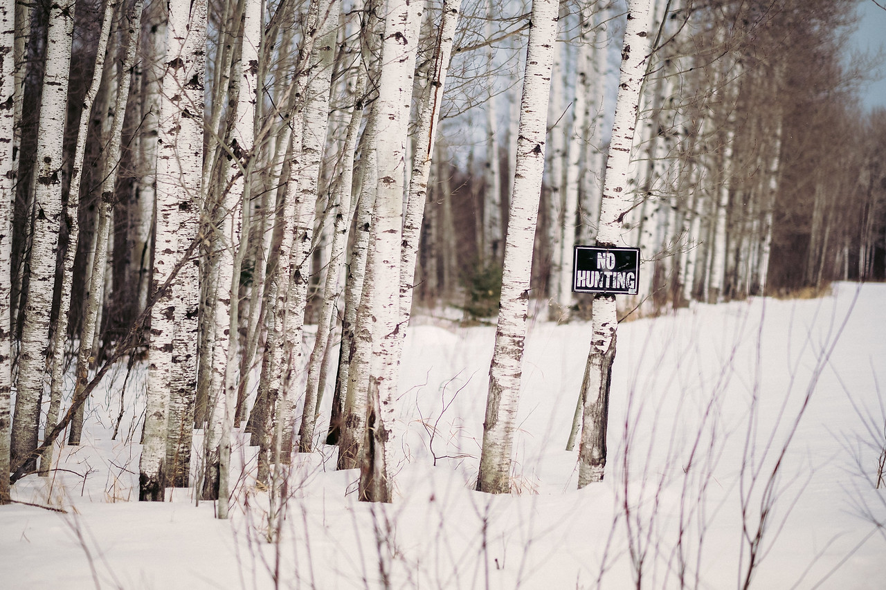 No hunting | Angora, MN