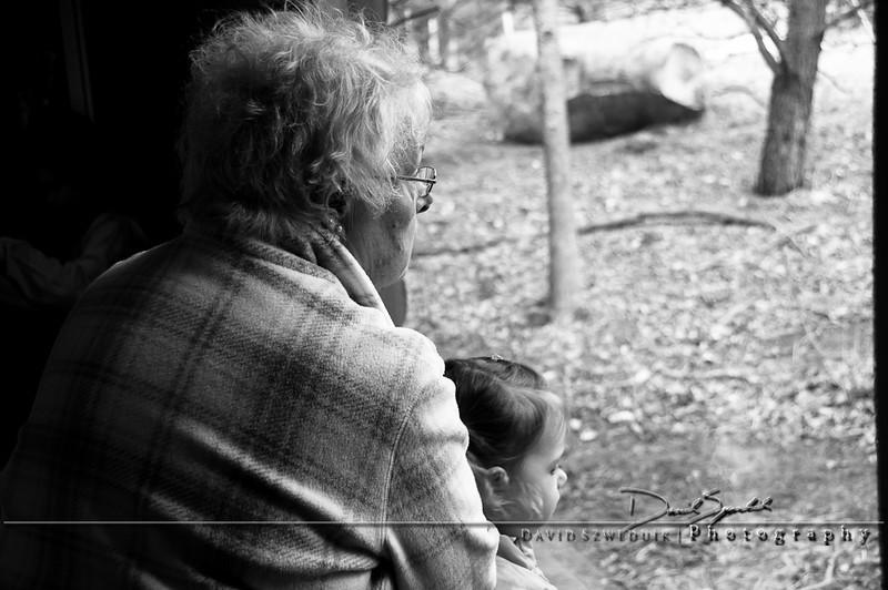 Watching - Minnesota Zoo - Apple Valley, MN