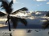 Maui December 2011 014