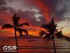 Maui December 2011 318
