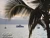Maui December 2011 310