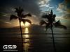 Maui December 2011 313