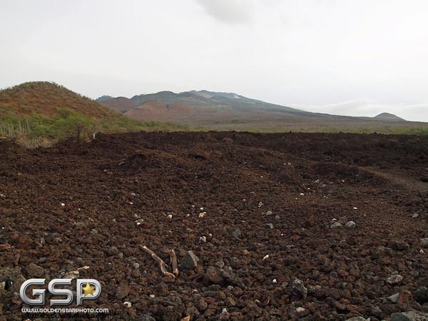 Maui December 2011 187