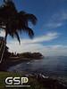 Maui December 2011 082