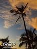 Maui December 2011 332