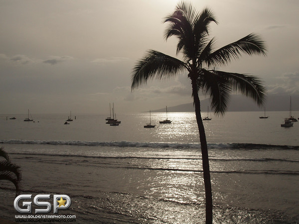 Maui December 2011 230