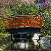 Descanso Gardens 080315 : Descanso Gardens, La Canada Flintridge, California.