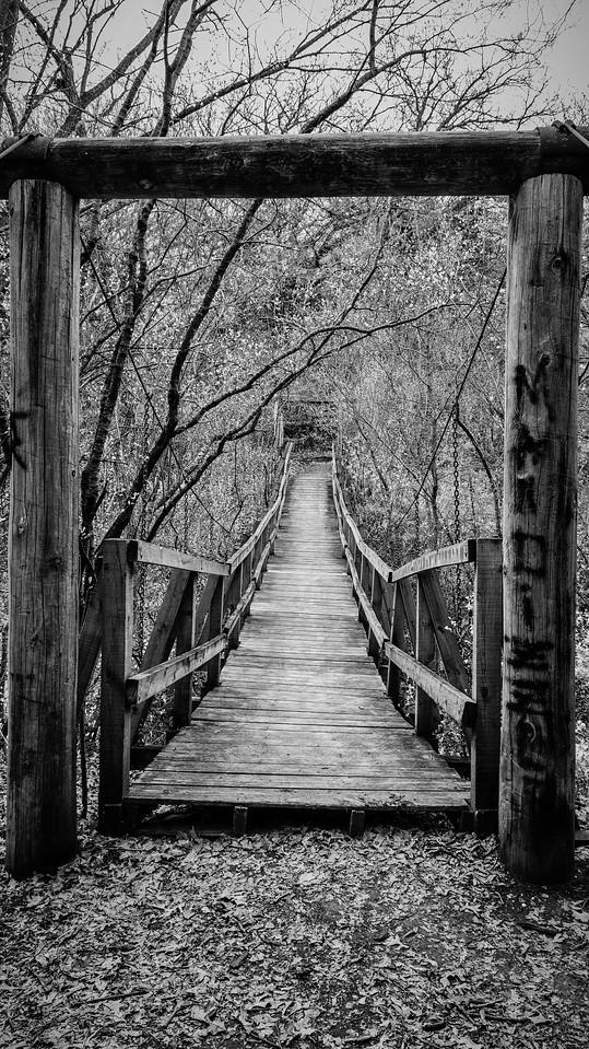 Suspension Bridge to Walk On