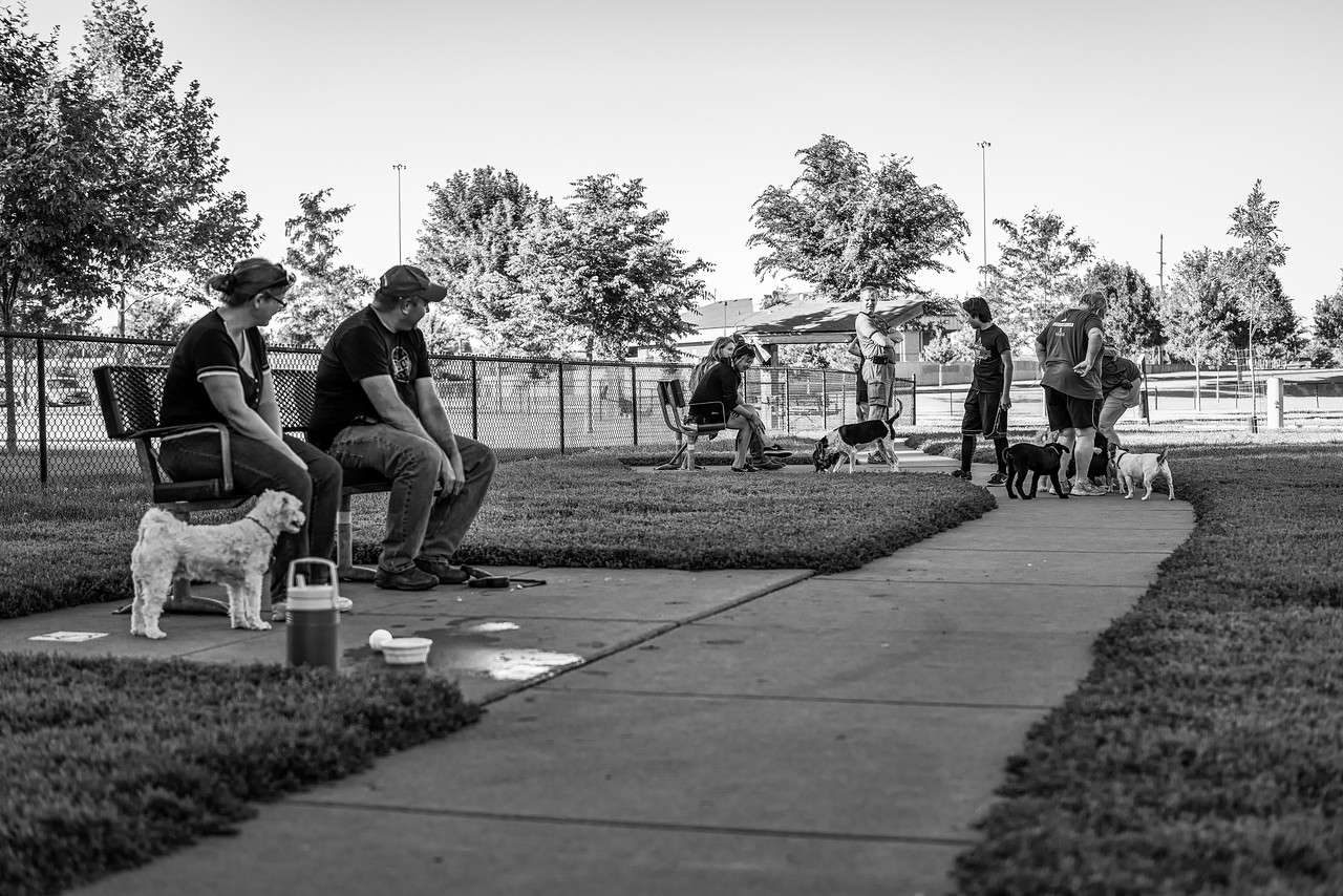 Spencer Dog Park